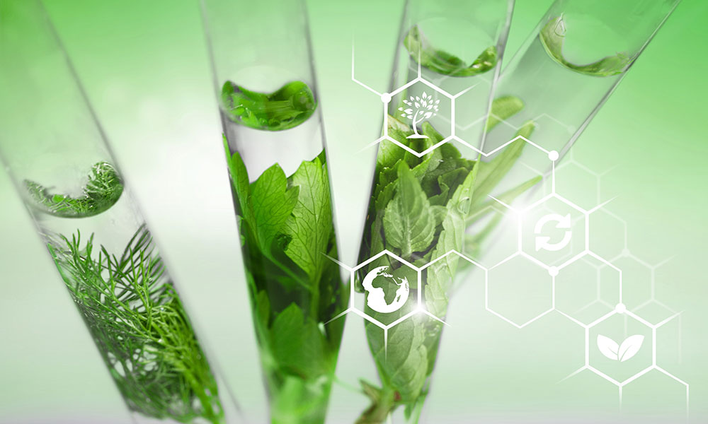 Plants and test tubes